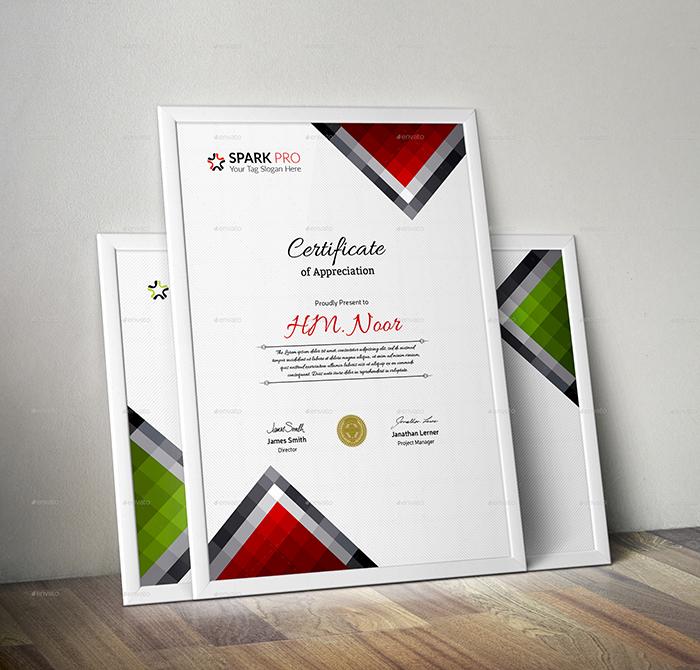 Certificate (Premium)