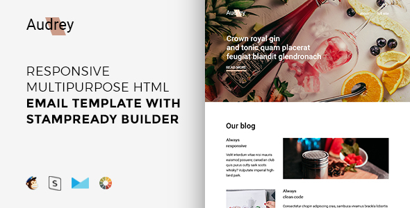 55 best responsive email newsletter templates 2017 html psd audrey responsive newsletter templates spiritdancerdesigns Images
