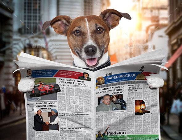 Dog Newspaper Mockup PSD